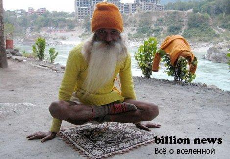 Индииц, питающийся солнечным светом!