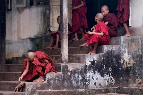 Жизнь монахов в Бирме (12 фото)