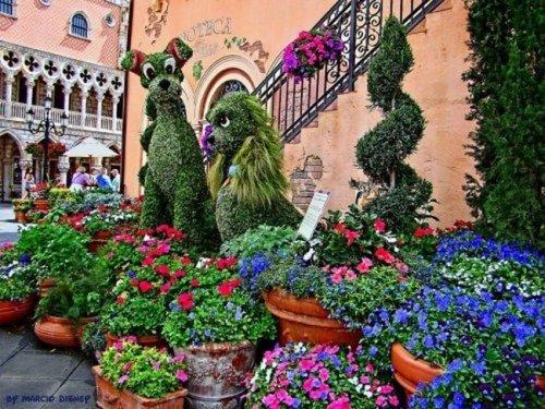 Цветочный фестиваль в Диснейленде (21 фото)