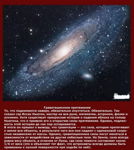 Интересные факты о науке