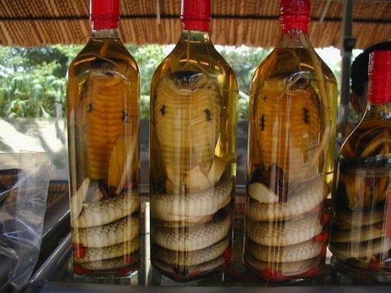 10 самых странных напитков