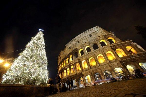 Новогодние елкт в различных городах мира (11 фото)