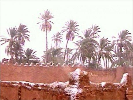 В Африку пришла настоящая зима — выпал снег (3 фото + видео)