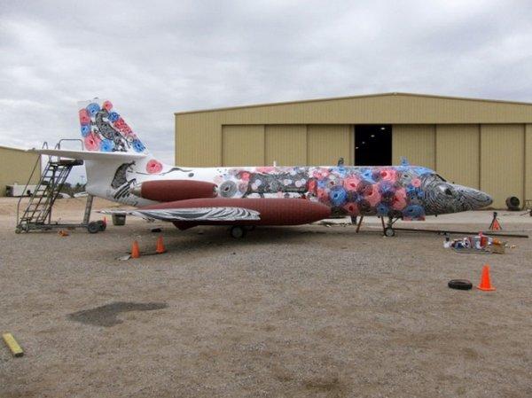 Выставка расписных самолетов (14 фото)
