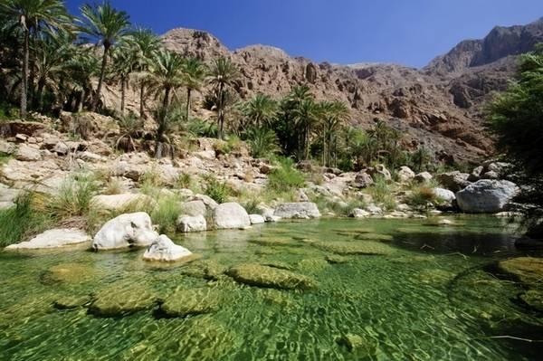 7 самых красивы х оазисов мира (21 фото)