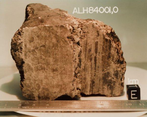 В марсианском метеорите нашли останки древней жизни
