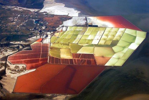 Разноцветные водоемы залива Сан-Франциско (13 фото)