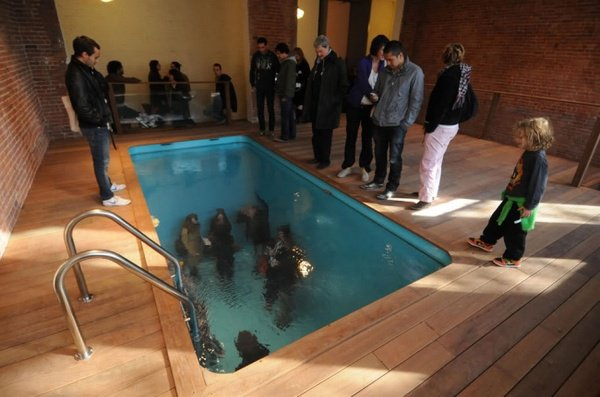 Swimming Pool - натуральный бассейн без воды (3 фото + видео)