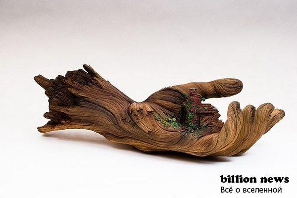 Скульптуры из дерева от Кристофера Дэвида Уай (14 фото)