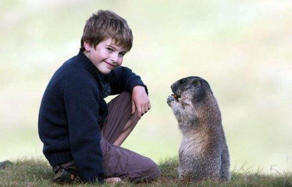Восьмилетний малчик общается с сурками (7 фото)