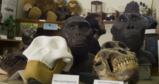 10 Музеев, посвящённых исключительно мифическим созданиям