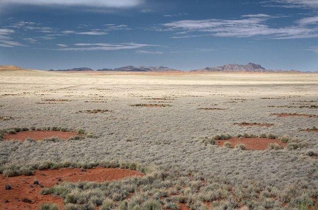 Необычные круги Фей в Намибии (9 фото)