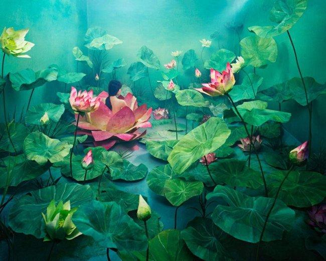 Удивительные миры  Джи Юнг Ли (16 фото)