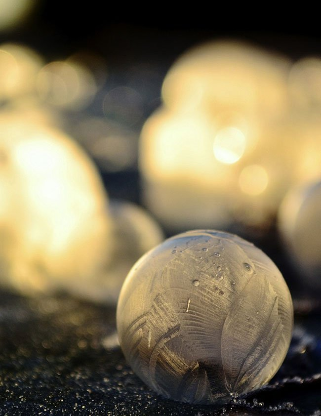 Замерзшие мыльные пузыри от Анжелы Келли (10 фото)