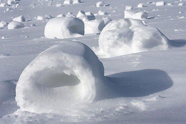 Снежные перекати-поле (10 фото)