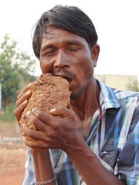 Пожиратель кирпичей из Индии (8 фото + видео)