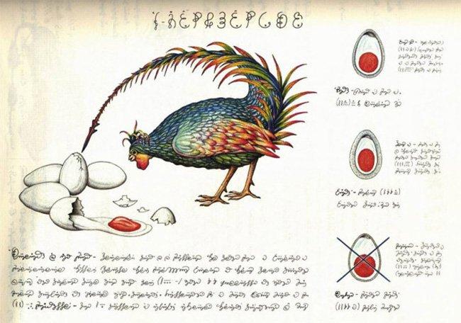 Codex Seraphinianus — энциклопедия на неизвестном языке