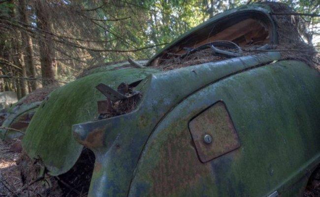 Бельгийское кладбище раритетных автомобилей (27 фото)