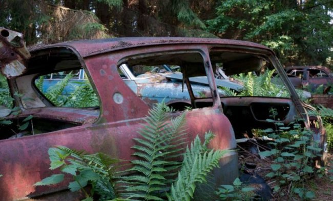 Бельг ийское кладбище раритетных автомобилей (27 фото)