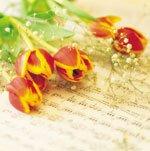 Как сохранить срезанные цветы свежими?