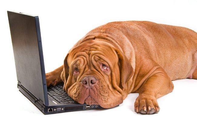 Как почистить клавиатуру ноутбука?