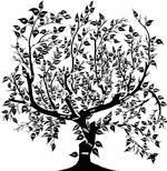 Генеалогия, история семьи. Местные переписи