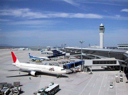 Когда выгодно покупать авиабилеты?