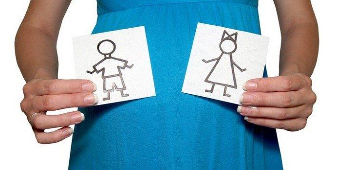 Определяем пол будущего ребенка сразу после зачатия