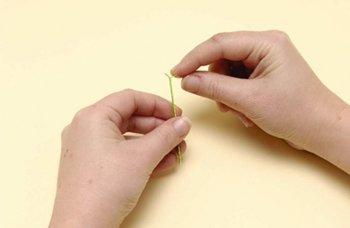 Как сделать квиллинг цветы, пошаговая инструкция с фото