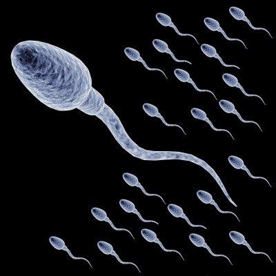 sperma-vlagalishe-konchit-vnutr