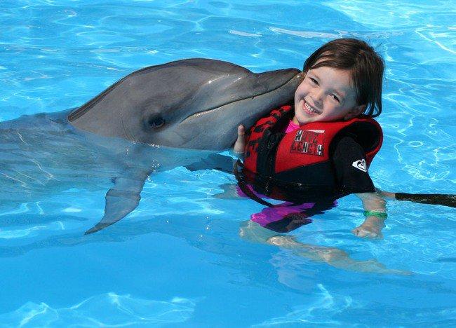 Дельфинотерапия: купание с дельфинами