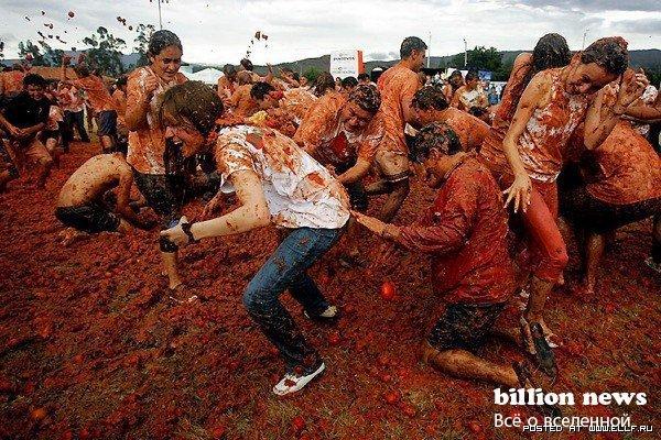 Фестиваль Томатина в Колумбии (14 фото)