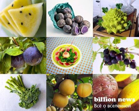 Самые интересные продукты питания!