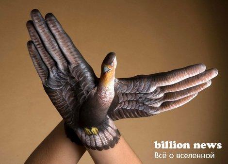 Бодиарт в виде животных на руках (Handimals) (20 фото)