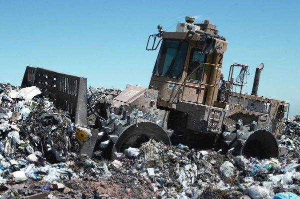 10 интересных фактов о переработке отходов
