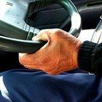 Как выучиться на управление автопогрузчиком