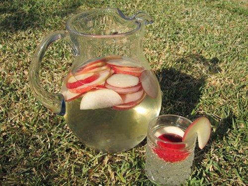 Как приготовить сангрию в домашних условиях — фото рецепт вина сангрия