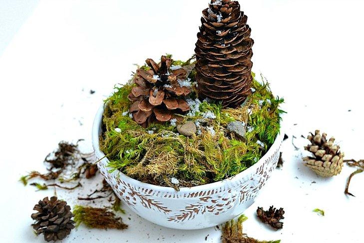 Поделки из природного материала: мини-лес своими руками