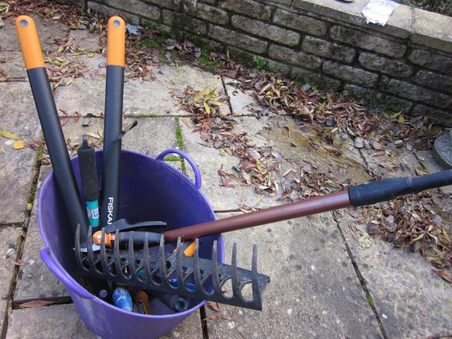 Лунный календарь на ноябрь 2012 для садоводов и огородников